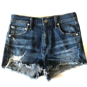 AGOLDE • Jaden High Rise Cut Off Shorts Size 26